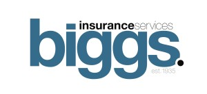 Biggs Logo 2010
